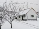 A Borozó télen